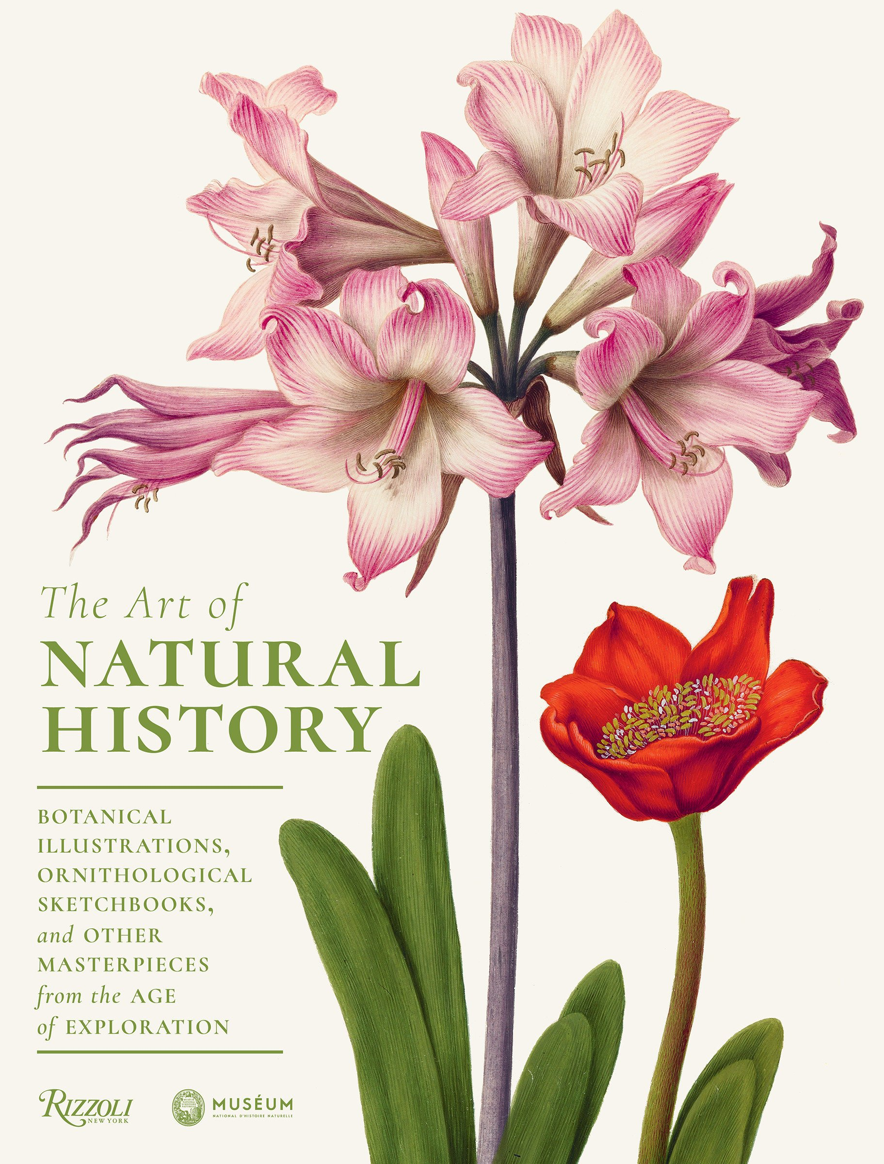 The Art Of Natural History  Botanical Illustrations Ornithological Drawings And Other Masterpieces From The Age Of Exploration