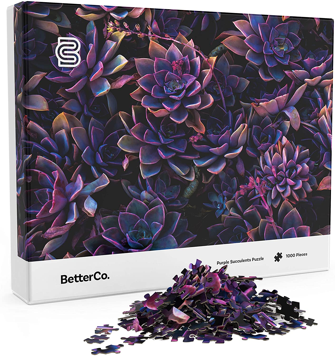 Purple Succulents 1000 Piece Jigsaw Puzzle - Challenge Yourself with 1000 Piece Puzzles for Adults, Teens, and Kids (Purple Succulents)
