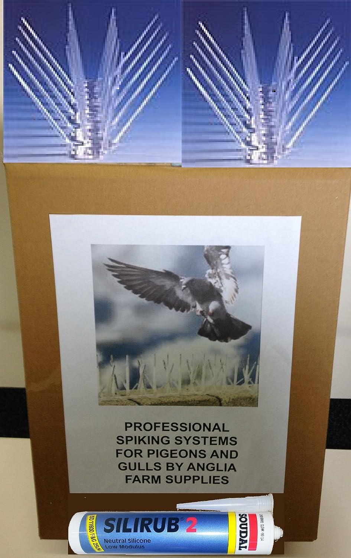 5 m/ètres oiseau Piques Anti-pigeons Gull professionnelle pointe large rebord pour syst/ème de fixation fournis en Silicone