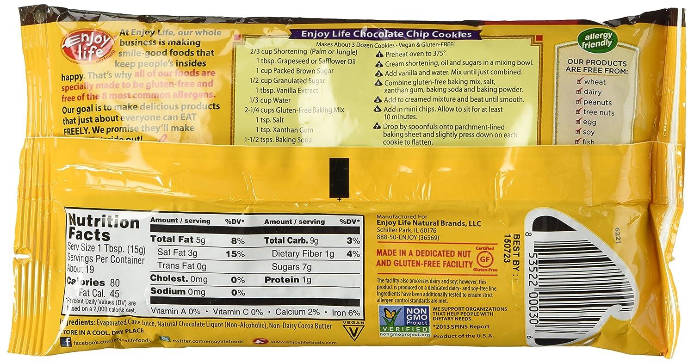Amazon.com: Enjoy Life Semi-sweet Chocolate Mini Chips Pck of 2 ...