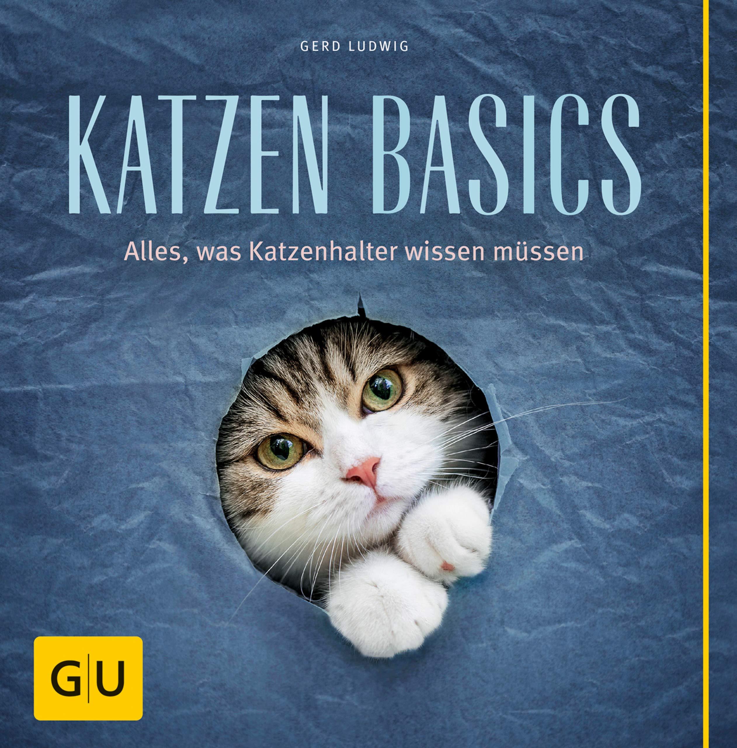 Katzen Basics  Alles Was Katzenhalter Wissen Müssen  GU Tier Spezial