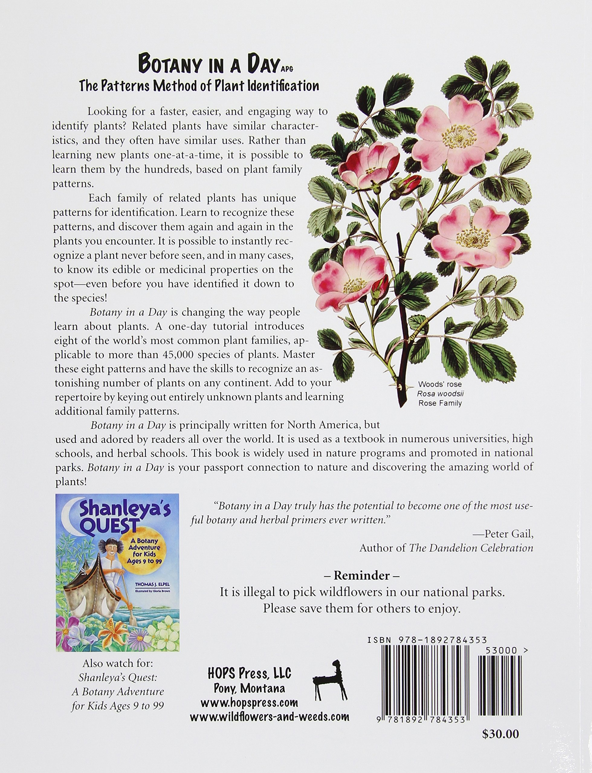 The botany coloring book by paul young - Botany In A Day The Patterns Method Of Plant Identification Thomas J Elpel 8601400138540 Books Amazon Ca
