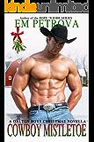 Cowboy Mistletoe (Dalton Boys Book 6)
