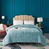 KASENTEX Luxury Plush Sherpa Comforter, Cozy Reversible Faux Fur Machine Washable Bedding, Cloud Blue, Twin/Twin XL Size