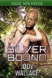 Silver Bound: Dragons of Tarakona (Magic, New Mexico Book 12)