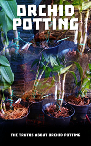 Orchid Potting: The Truths About Orchid Potting