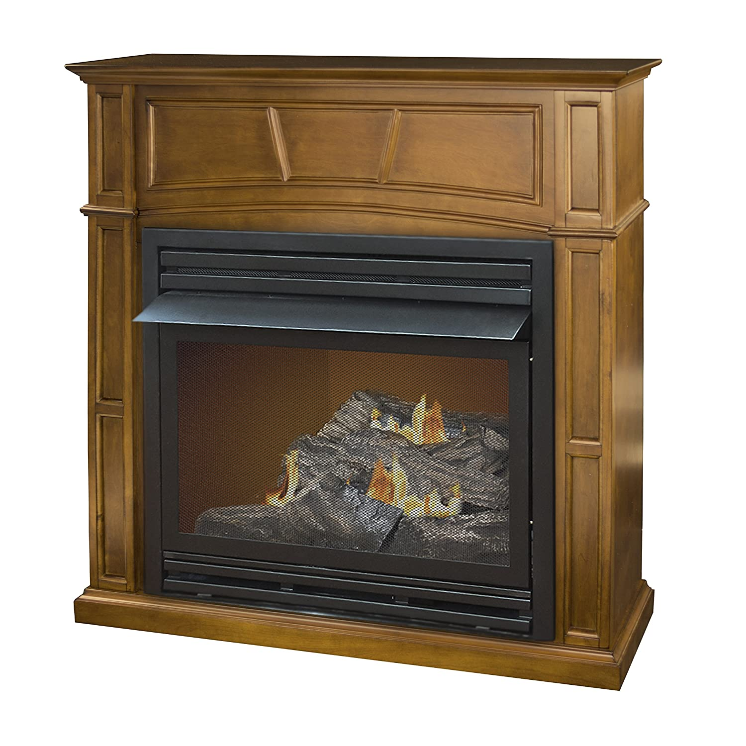 amazon com pleasant hearth vent free dual fuel fireplace in rich