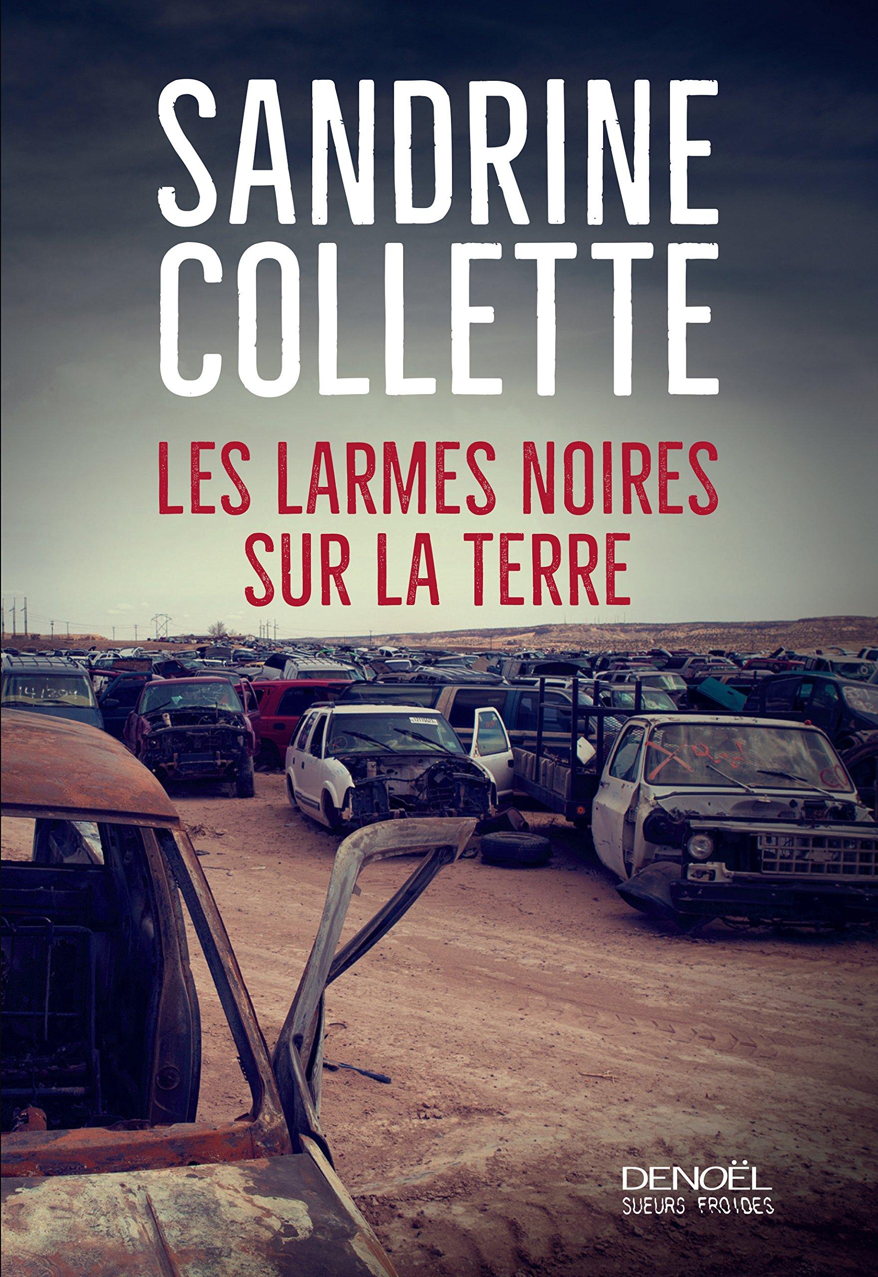 Les larmes noires sur la terre de Sandrine Collette