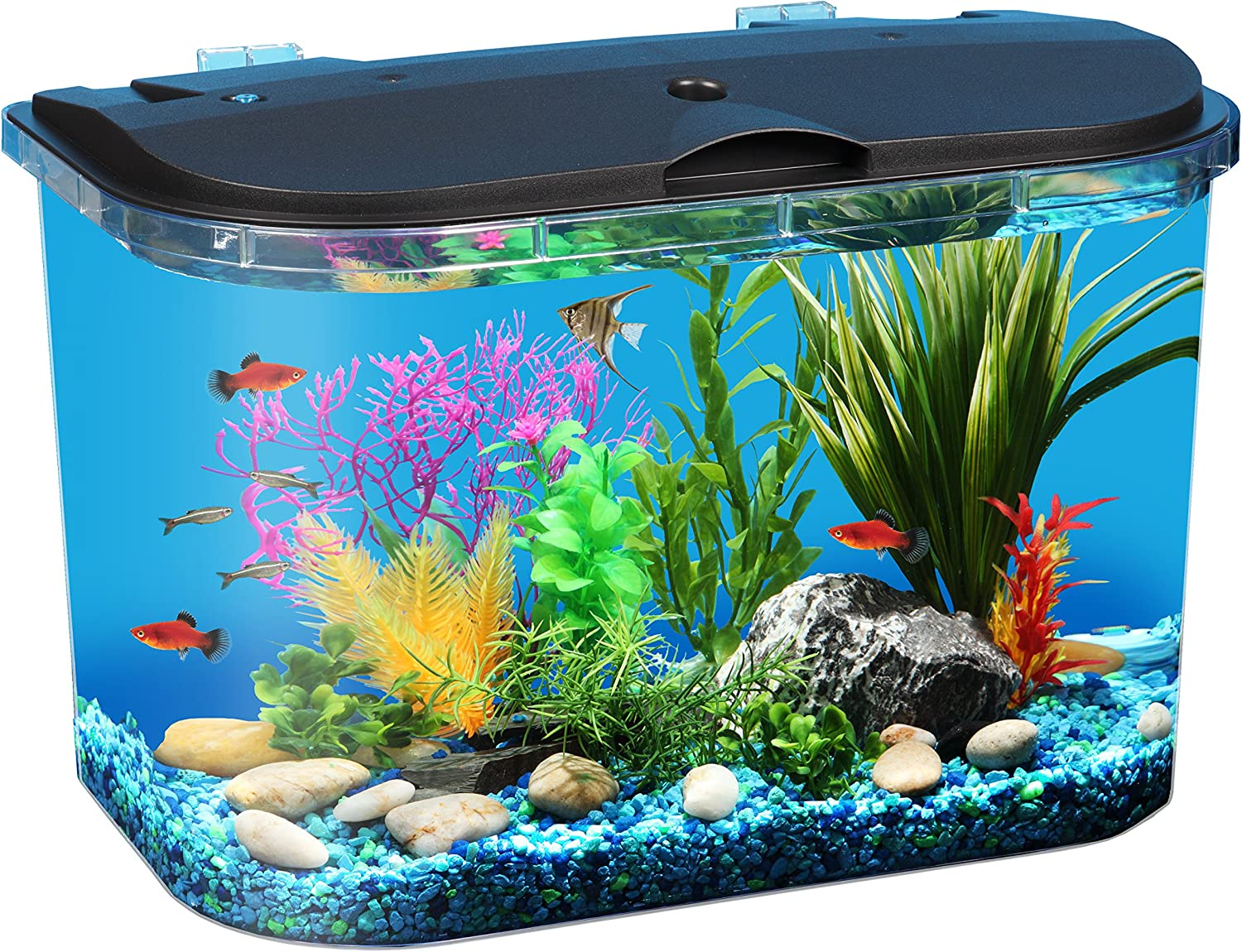 Koller Products Panaview 5-Gallon Aquarium Kit - Power Filter - LED Lighting, Black (Aq15005)
