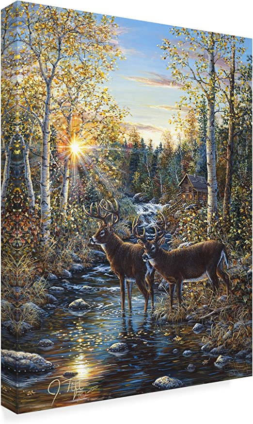 Amazon Com Whitetail Deer By Jeff Tift 18x24 Inch Home Kitchen