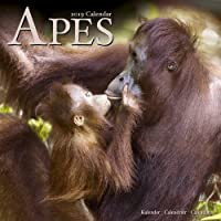 Apes Calendar 2019