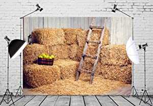 BELECO 9x6ft Farm Backdrop Interior of Old Barn with Straw Bales Stairs and Apples Country Scene Photography Backdrop for Photoshoot Party Nativity Decoration Photo Background Props
