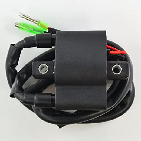 External Ignition Coil For Arctic Cat Mountain Pantera ZL ZR Panther