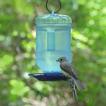 Opus [Perky-Pet] 780 Bebedero para pájaros Agua fresca: Amazon.es: Jardín