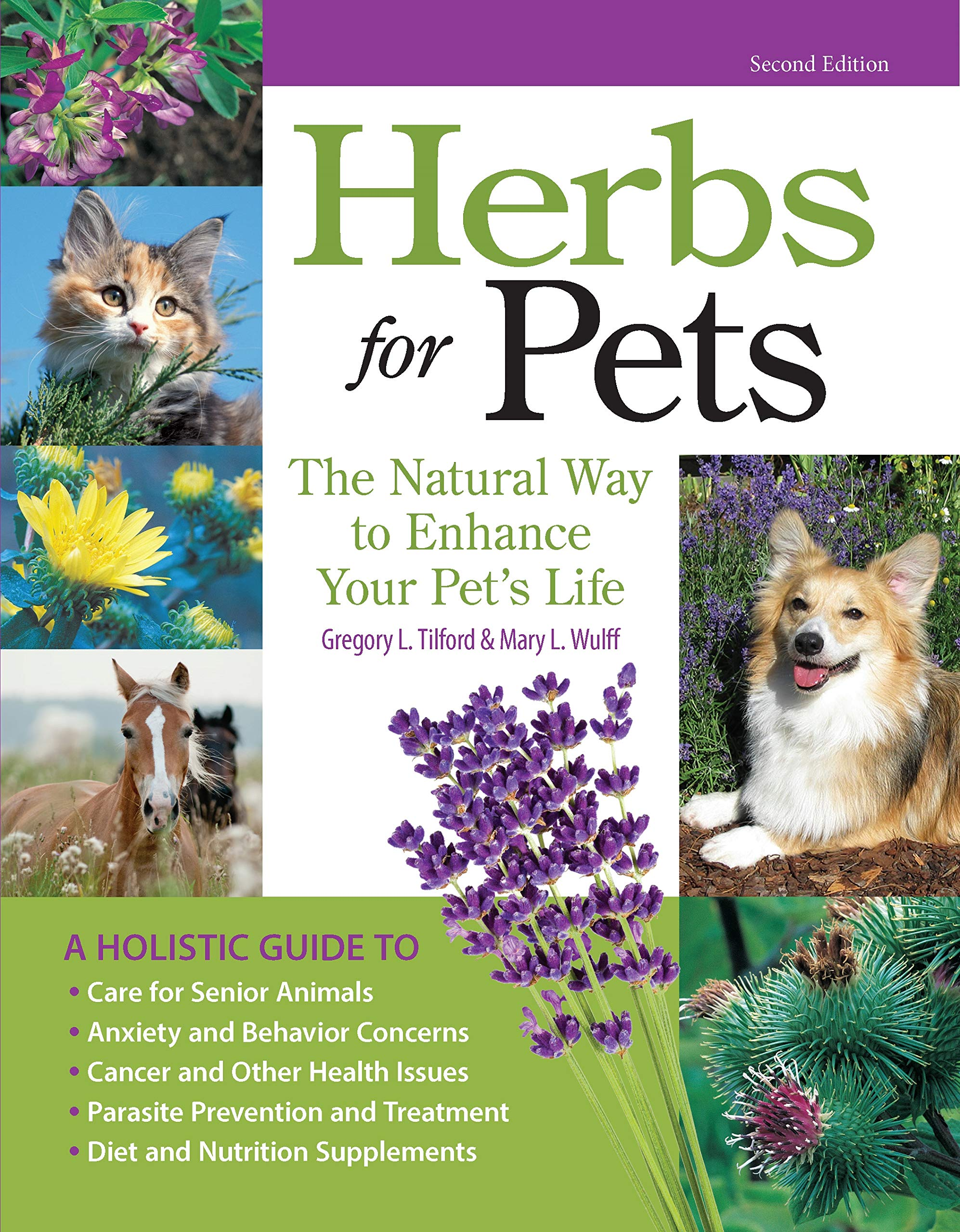 Herbs for Pets: The Natural Way to Enhance Your Pet's Life (CompanionHouse Books) A-Z Guide to Medicinal Plants, Holistic Recipes, and Nutritional Supplements for Dogs, Cats, Horses, Birds, and More