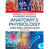 Workbook to Accompany Understanding Anatomy & Physiology: A Visual, Auditory, Interactive Approach
