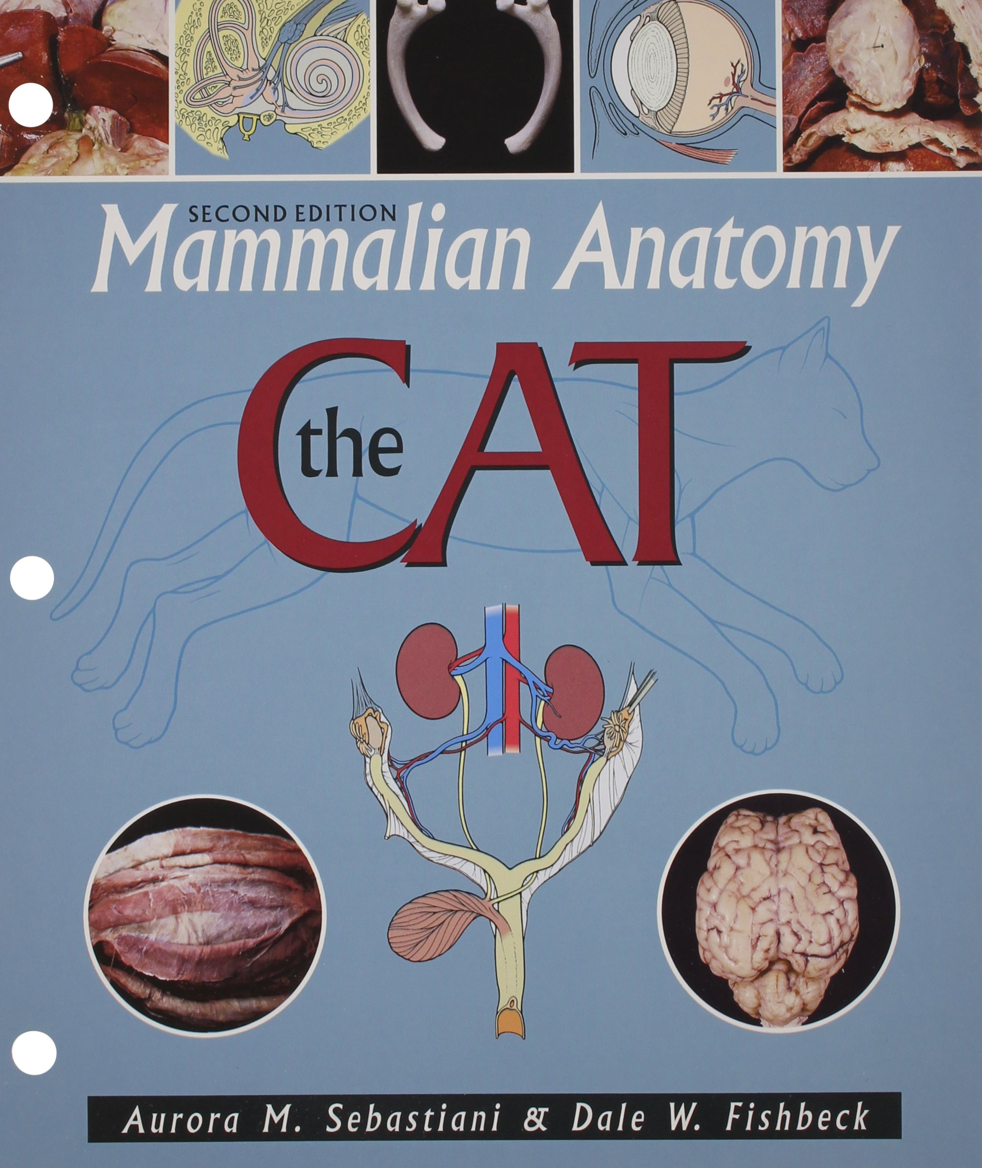 Mammalian Anatomy: The Cat: Aurora M Sebastiani, Dale W Fishbeck ...