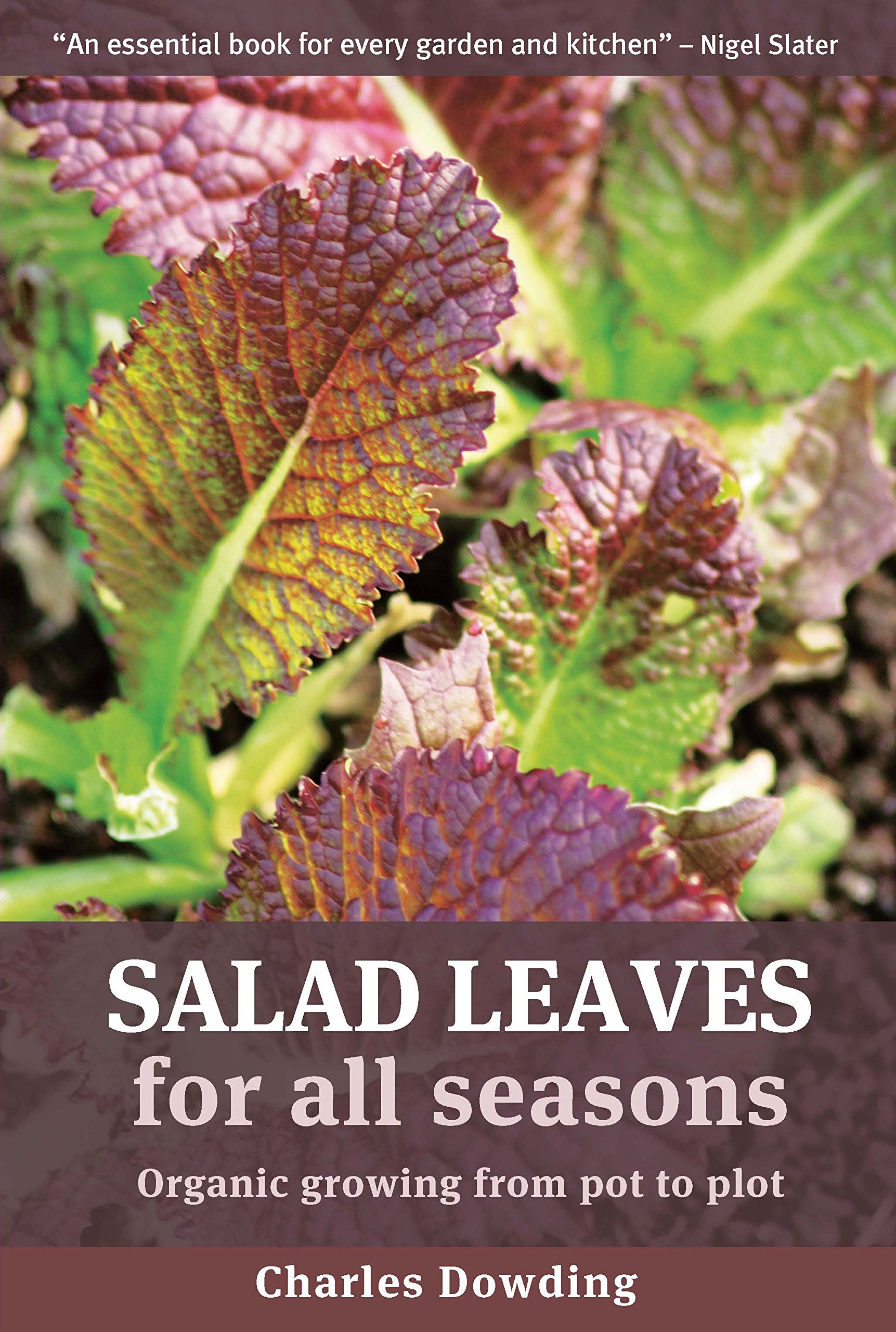 Salad Leaves For All Seasons: Organic Growing from Pot to Plot