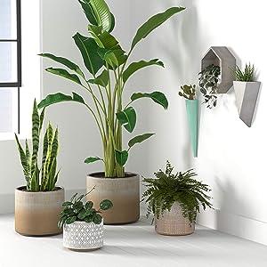 Rivet Rustic Indoor Outdoor Plant Pot