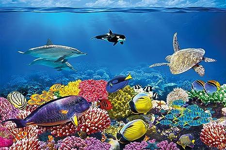 Tapiz de foto Acuario Mural Decoración Mundo submarino colorido Criaturas marinas Océano Peces Delfín Arrecife de