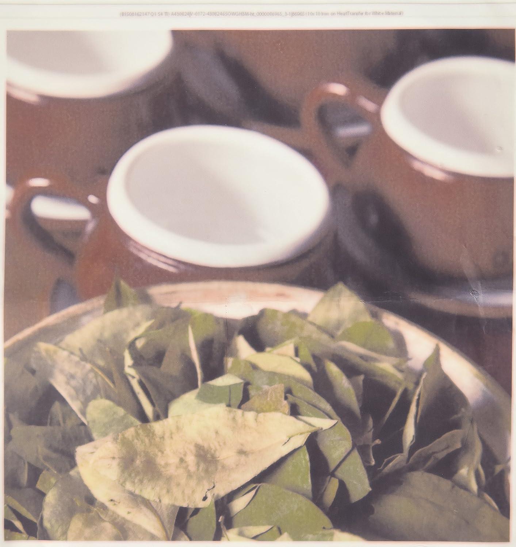 3dRose ht_86965_3 Peru、Cuzco。 Coca 葉と紅茶カップ Sa17 Bja0152-Jaynes ギャラリー-アイロン熱転写素材用 10 x 10インチ ホワイト   B00ADIB1S4