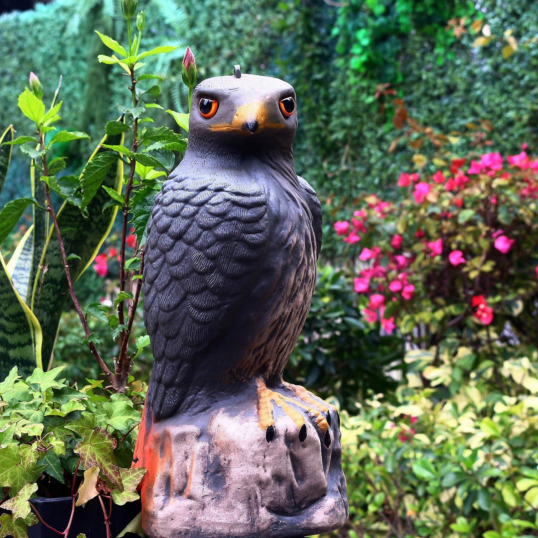 Frofine Halcón Águila de Jardín Águila de plástico Estatua águila Ahuyentador de Pajaros Espantapajaros Jardin Esculturas de Pájaro Paloma Control plagas de jardín Adorno Jardín Repelente de pájaros: Amazon.es: Jardín