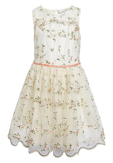 next Niñas Vestido De Dama De Honor Bordado (3-16 Años): Amazon.es ...