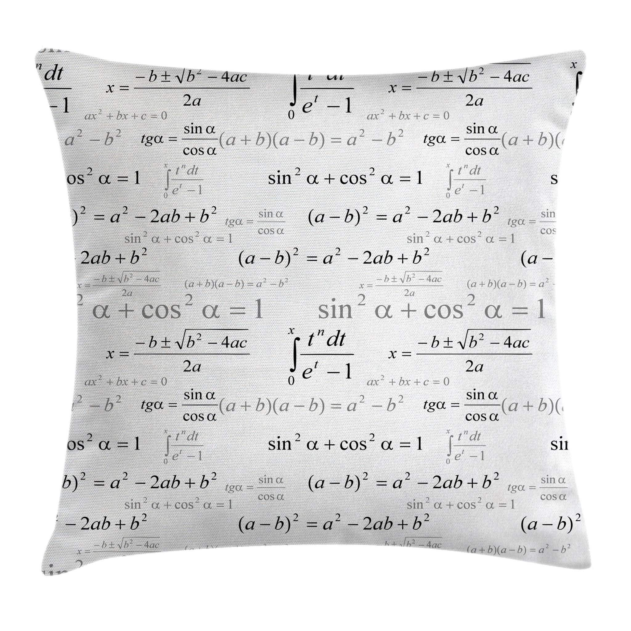 Ambesonne Kids Decor Throw Pillow Cushion Cover, School for Math and Geometry with Science Formules Chalk Board Style Image, Decorative Square Accent Pillow Case, 24 X 24 Inches, Black and White