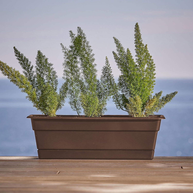 2 X 49cm Stone Grey Boston Window Box Coloured Planter Plant Pot Tray saucer