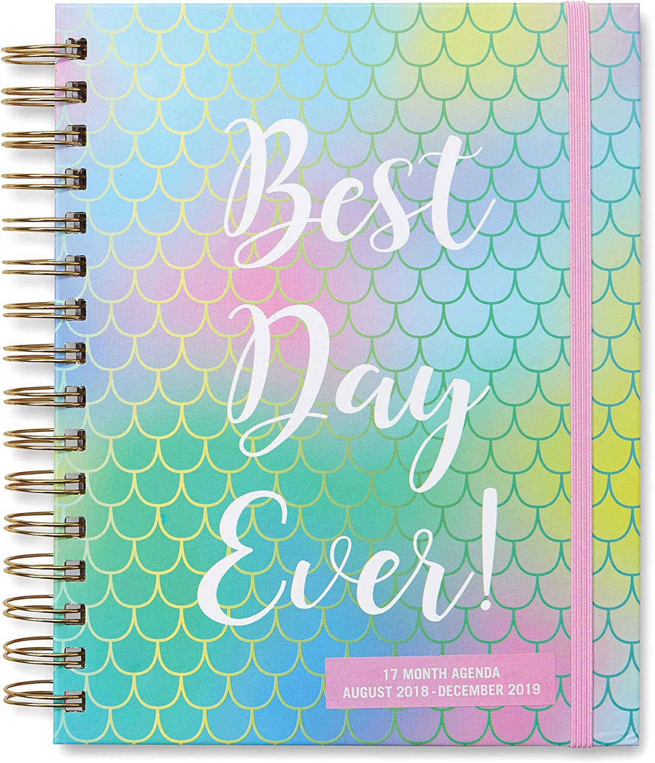 """2018-2019 Daily Calendar Agenda and Planner: Track Appointments, Tasks and Increase Productivity with 17-Month Daily and Weekly Personal Organizer for Home or Office -""""Best Day Ever"""""""
