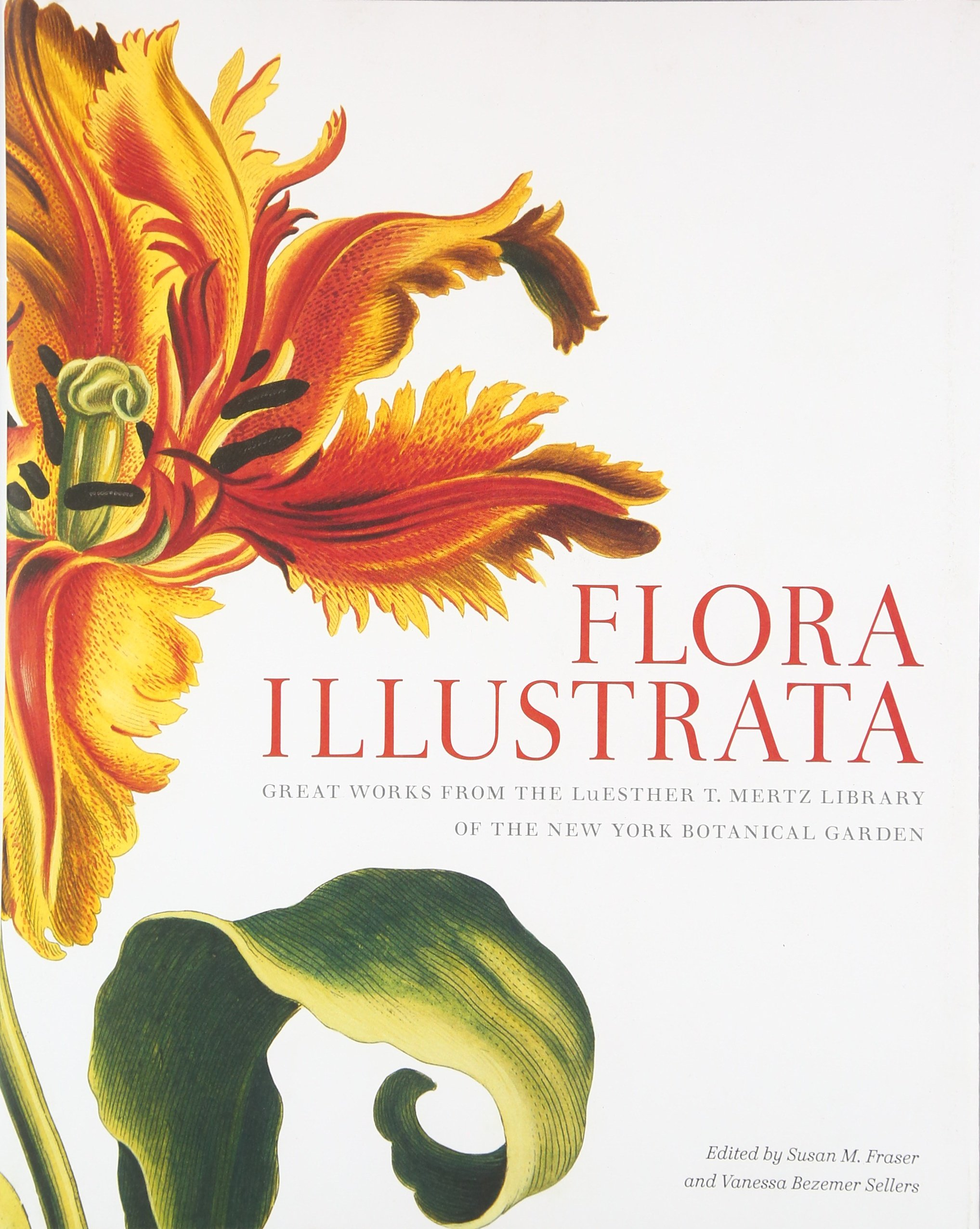 Flora Illustrata: Great Works from the LuEsther T. Mertz Library of The New York Botanical Garden by Ingramcontent