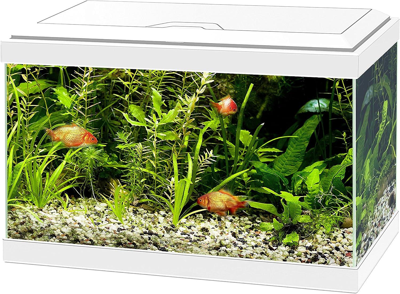 Acuario Ciano Aqua 20 con luces LED y filtro, de color blanco