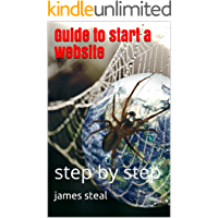 Guide to start a website: step by step (English Edition)