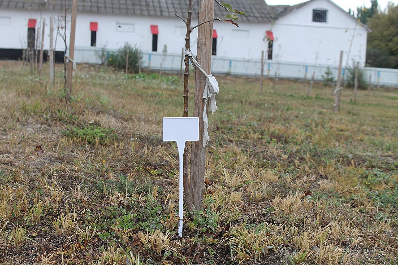 TARNO 50 Preisschild Preisschilde Gro/ß Schilde Kr/äuterschilde Schild Pflanzenschild Gartenschild