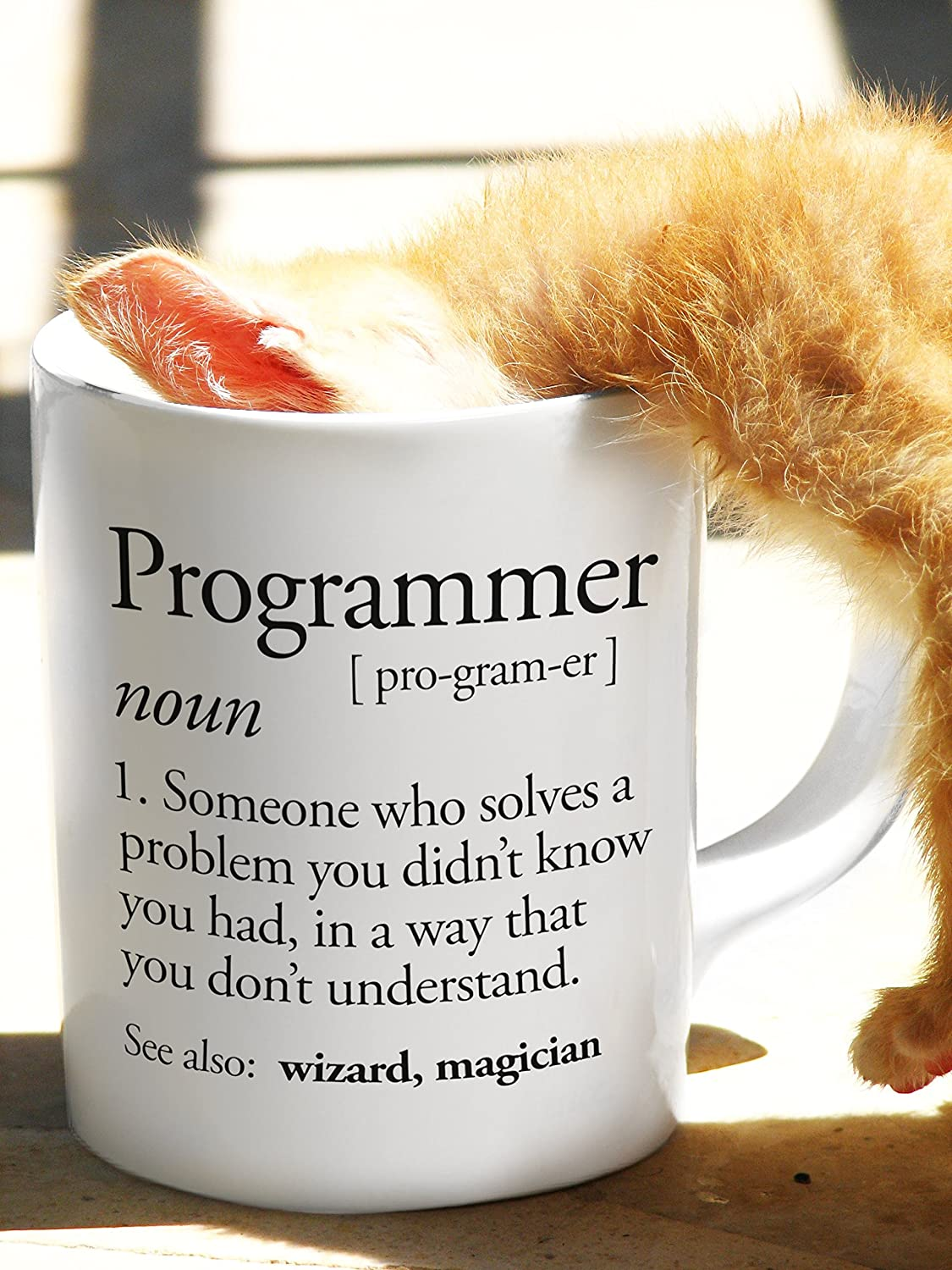 Coders and Software Developers! A Mug For the Computing Programmer Funny Programmer Defintion Meaning Gift Computer Science Geeks