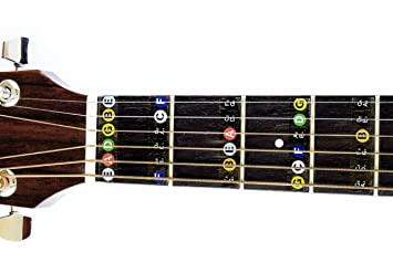 Amazon Guitar Fret Stickers Color Coded For Fretboard Note Positions Musical Instruments