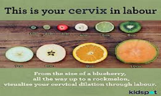 Amazon com: How to Dilate the Cervix: Appstore for Android