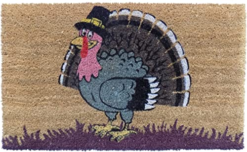 Imports Decor Turkey Vinyl Backed Coir Doormat, 30 by 18 by 1 2