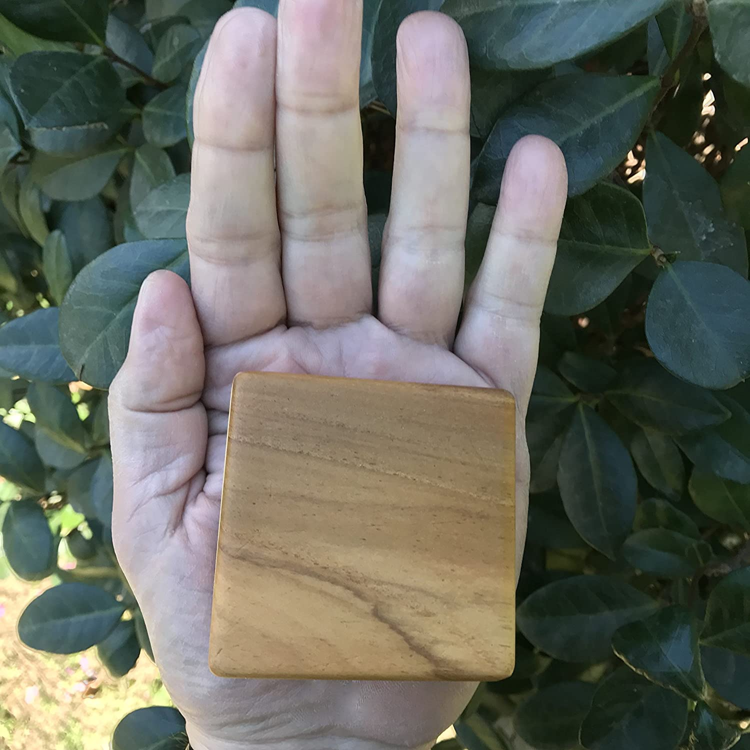 approx 2.5 square LTM Chambered High Tone Teak Wood Musical Shaker Hand Percussion Instrument