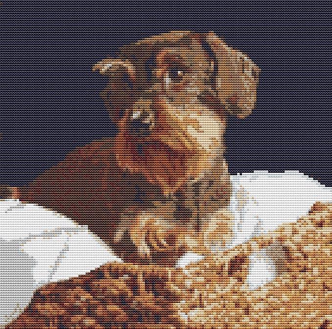Kit de punto de cruz para perro con diseño de perro salchicha de 25 ...