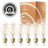 Hudson Lighting Vintage Light Edison Bulb- ST58 - 230 Lumens - 60w Incandescent - Dimmable - E26 Bulbs Base for Chandeliers Wall Sconces Pendant Lighting- 6 Pack