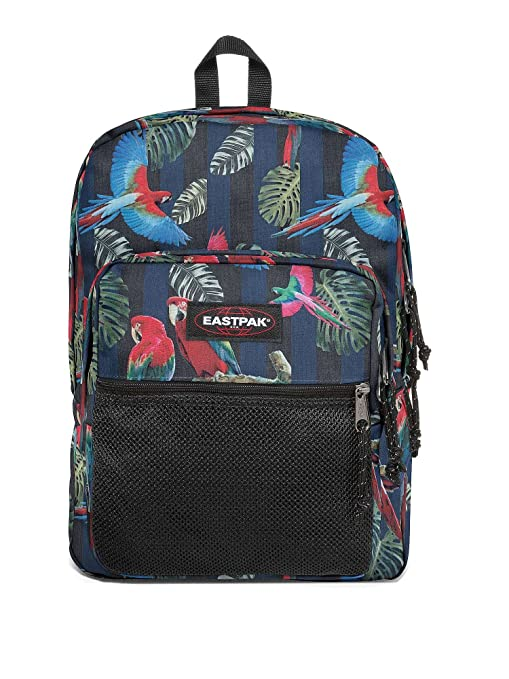super popolare a985b aece5 Eastpak Zaino Pinnacle colore Parrots: Eastpak: Amazon.it: Informatica