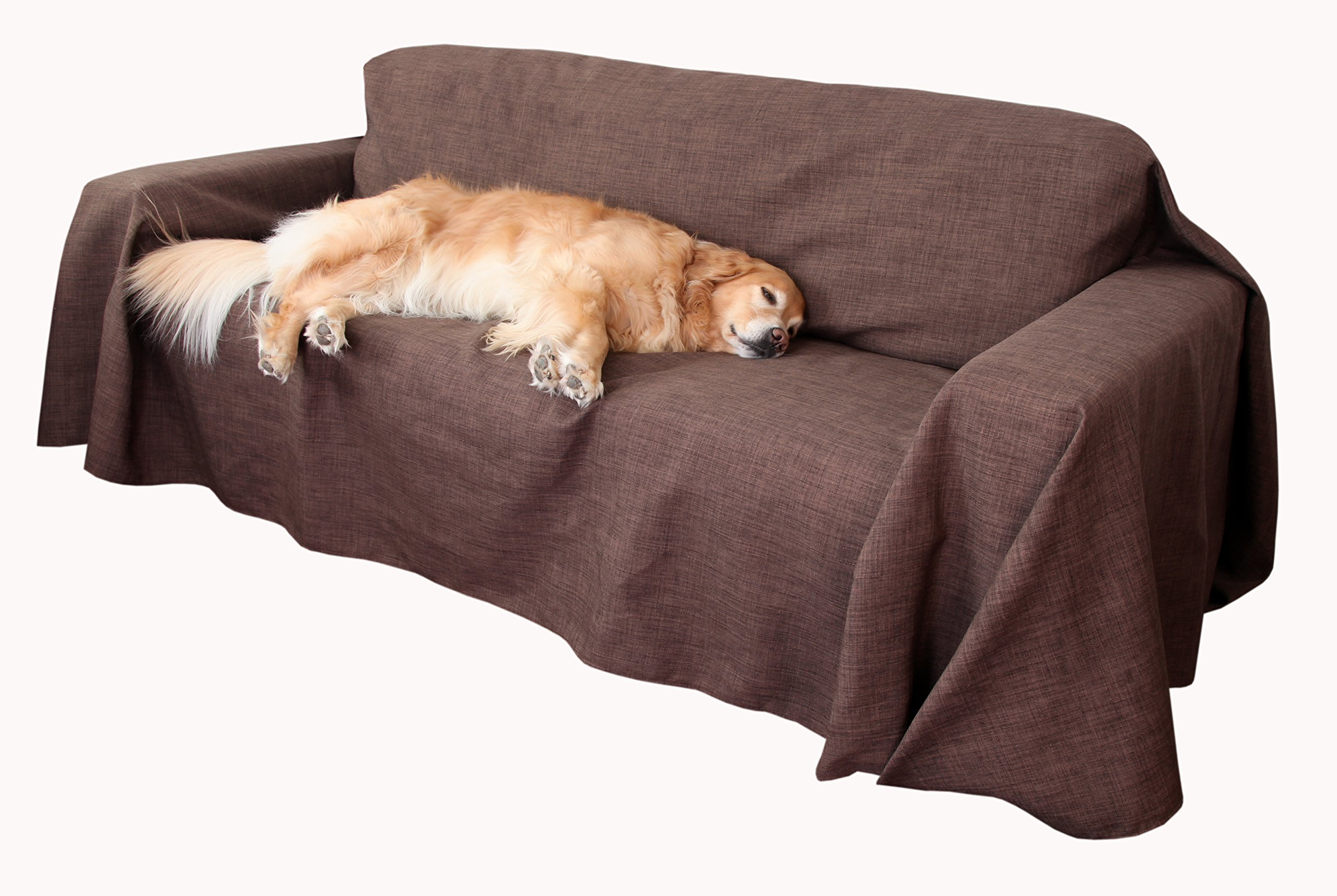 Floppy Ears Design Simple Couch CoverAll Protector, Chocolate, Medium Two Cushion Couch Loveseat Size