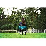 Horseware Amigo Mio Turnout Medium Black Turquoise osier Couverture d'hiver