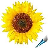 Fliesenaufkleber für Bad und Küche - 15x15 cm - Motiv Sonnenblume - 10 Fliesensticker für Wandfliesen