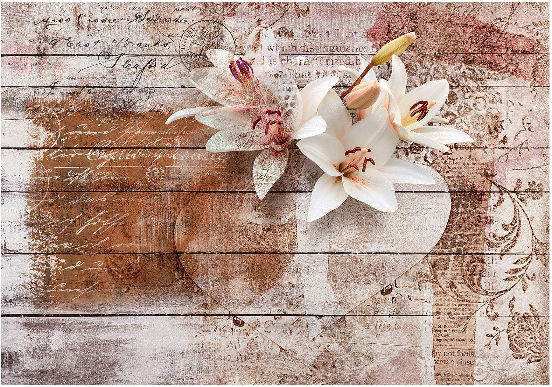murando Papier Peint Adh/ésif Vintage 343x256 cm Mural D/écoration Feuille Autocollante Stickers XXL Poster Tableaux Muraux Tapisserie Photo Trompe loeil Fleurs Bois Planche f-A-0616-a-a