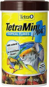 Fish Food & Treats