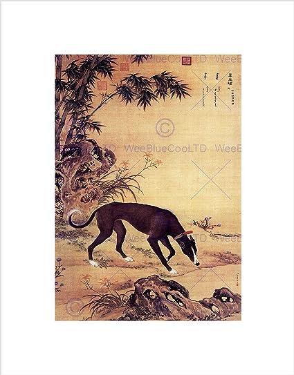 PAINTING ANIMAL CASTIGLIONE PRIZED DOGS MUKONGQUE GREYHOUND ART PRINT LAH375B