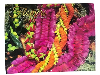 Hawaii Calendar 2019 Amazon.: Long's Hawaii 2019 Hawaiian Twelve Month Calendar