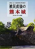 ブルーシートのかかっていない被災直後の熊本城